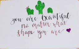 Você é bonito não importa o que a forma você é! ilustração stock