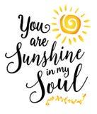Você é luz do sol em minha alma Fotos de Stock