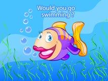 Você iria nadar? Fotos de Stock Royalty Free