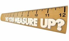 Você mede acima da revisão qualificada régua da avaliação ilustração stock