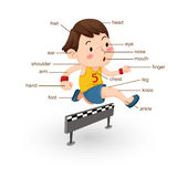 Vocabulary part of body  Royalty Free Stock Images