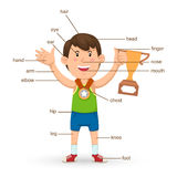 Vocabulary part of body  Stock Photo