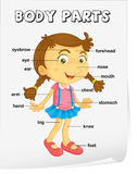 Vocabulary worksheet Stock Photo