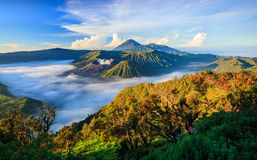 Vocalno de Bromo au lever de soleil, Java-Orientale, Indonésie Photo libre de droits