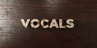 Vocals - grungy wooden headline on Maple  - 3D rendered royalty free stock image Stock Images