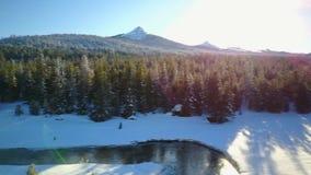 Vochtige bergstroom in de winter 2 stock videobeelden