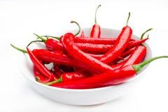 Vochtige Spaanse pepers Stock Foto