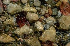 Voda na kamenu Obraz Royalty Free