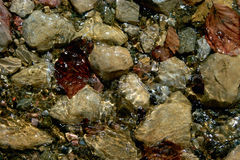 Voda na kamenu. Crystal clear mountain water washed over stones in various colors Royalty Free Stock Image