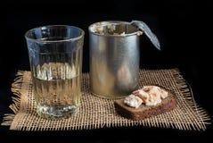 Vodca bebendo do russo Fotografia de Stock