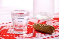 Vodca e cucumbler Home-made Imagem de Stock