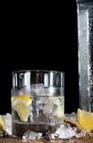 Vodka royaltyfria bilder