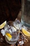 Vodka royaltyfri bild