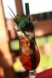 Vodka asiatica con la bevanda del ghiaccio Fotografie Stock