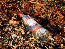 Vodka bottle Stock Photo