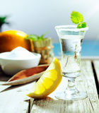 Vodka cocktail with lemon. Chilled glass of vodka cocktail garnished with frosting and mint and served with lemon alongside a turquoise pool Royalty Free Stock Photo