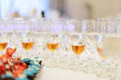 Vodka and Cognac Royalty Free Stock Image