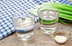 Vodka con la cipolla e l'aglio Fotografia Stock Libera da Diritti