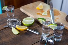 Vodka drinks with lemon and lime Royalty Free Stock Photos