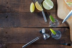 Vodka drinks with lemon and lime Royalty Free Stock Images