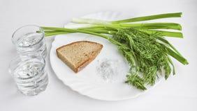 Vodka in due vetri trasparenti, cipolle verdi, aneto, pane di segale e sale grosso sul piatto - natura morta immagini stock