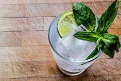 Vodka eller Gin Tonic Cocktail med limefrukt, mintkaramellsidor och is royaltyfri foto