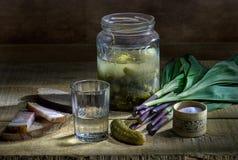 Vodka en vidrio con los pepinos y la cebolla salvaje salados Fotos de archivo libres de regalías