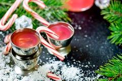 Vodka för godisrotting, traditionell julalkoholdrink royaltyfri fotografi