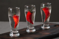 Vodka fredda in un vetro di colpo Immagini Stock Libere da Diritti
