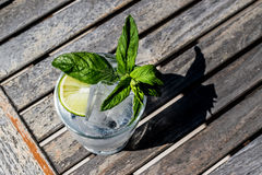 Vodka or Gin Tonic Cocktail with lime, mint leaves and ice at the garden natural light. Beverage Concept stock image