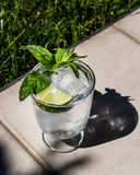 Vodka or Gin Tonic Cocktail with lime, mint leaves and ice at the garden natural light Royalty Free Stock Photos
