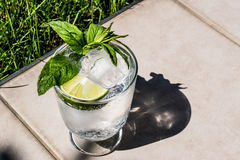 Vodka or Gin Tonic Cocktail with lime, mint leaves and ice at the garden natural light Royalty Free Stock Photography