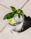 Vodka or Gin Tonic Cocktail with lime, mint leaves and ice at the garden natural light Royalty Free Stock Images