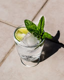 Vodka or Gin Tonic Cocktail with lime, mint leaves and ice at the garden natural light Stock Photos