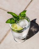 Vodka or Gin Tonic Cocktail with lime, mint leaves and ice at the garden natural light Stock Image