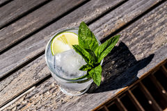 Vodka or Gin Tonic Cocktail with lime, mint leaves and ice at the garden natural light Stock Images