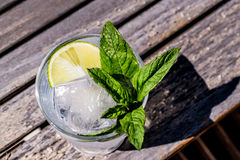 Vodka or Gin Tonic Cocktail with lime, mint leaves and ice at the garden natural light Royalty Free Stock Photo