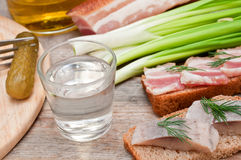 Vodka, green onion, cucumber and bacon Royalty Free Stock Photography