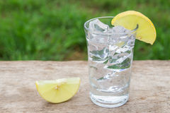 Vodka with lemon on wooden background Royalty Free Stock Photo