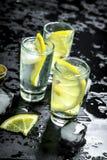 Vodka med citronen och is Nolla royaltyfri foto