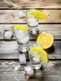Vodka med is i sköt exponeringsglas och skivor av citronen arkivfoto
