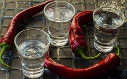 Vodka med peppar royaltyfri foto