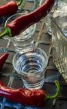 Vodka med peppar royaltyfri bild