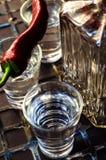 Vodka med peppar fotografering för bildbyråer