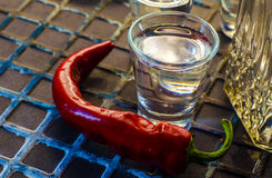 Vodka med peppar arkivbilder