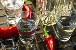 Vodka med peppar royaltyfria bilder