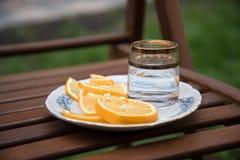 Vodka och apelsiner på plattan Royaltyfri Bild