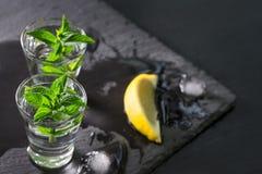 Vodka ou genièvre avec la tranche de menthe et de citron images libres de droits