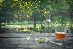 Vodka with pickled cucumbers, two shot glasses and mug of cold beer on the wooden table at the nature background. After party. Royalty Free Stock Photography