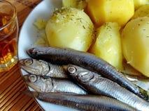 Vodka potatisar, kryddig liten stackare, späcka-matställe från naturprodukter closeup Stort mellanmål för vodka nationell maträtt royaltyfri bild
